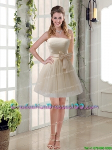 Simple Ruching Strapless Princess Sexy Graduation Dresses with Bowknot
