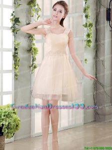 Perfect Straps A Line Champagne Graduation Dress with Appliques