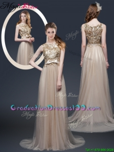 Luxurious Brush Train Graduation Dresses with Appliques and Bowknot