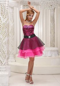 Hot Pink and Black Graduation Dress in Zebra Print Fabric and Organza