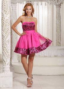 Lovely Sweetheart Zebra Hot Pink Short Senior Graduation Dresses