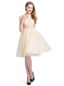 Deluxe Tulle Bateau Sleeveless Clasp Handle Beading and Lace Graduation Dresses in Champagne