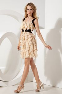 low Price Straps Ruffled Champagne Short Graduation Dresses