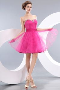 Hot Pink A-line Mini-length Organza University Graduation Dress