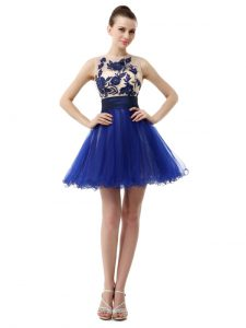 Organza Scoop Sleeveless Clasp Handle Appliques Graduation Dresses in Royal Blue